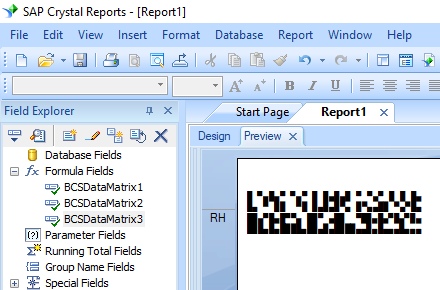 data matrix crystal reports
