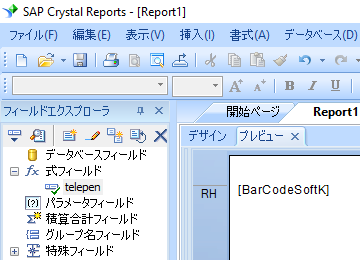 Telepen crystal reports