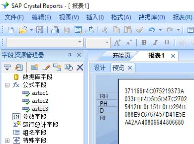 Aztec Code 水晶报表 公式 字段