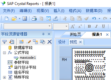 MaxiCode 水晶報表